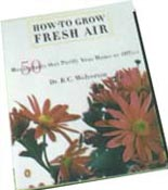 How to Grow Fresh Air!